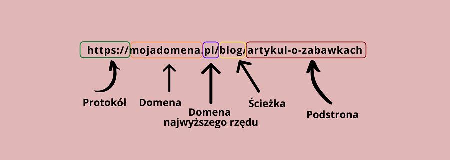 Z czego składa się adres URL